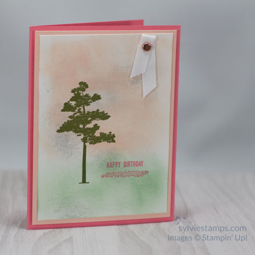 Cool Birthday Card Ideas Sylvie Stamps Simple And Classy